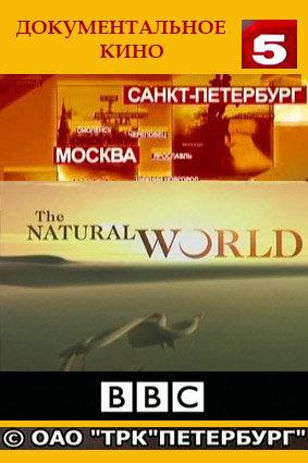 Мир природы /Natural World (102 фильма)